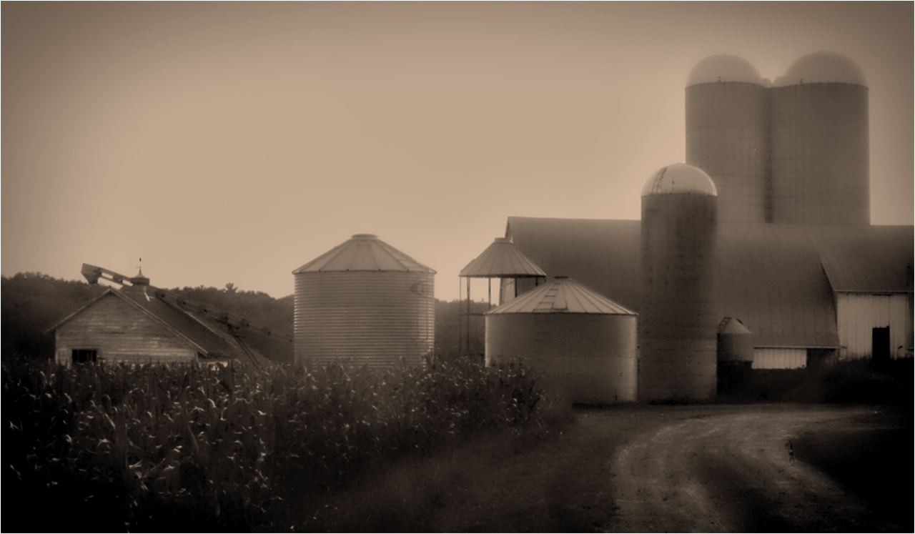 Fog on the Farm - Monochrome Print - Name Withheld Per Request