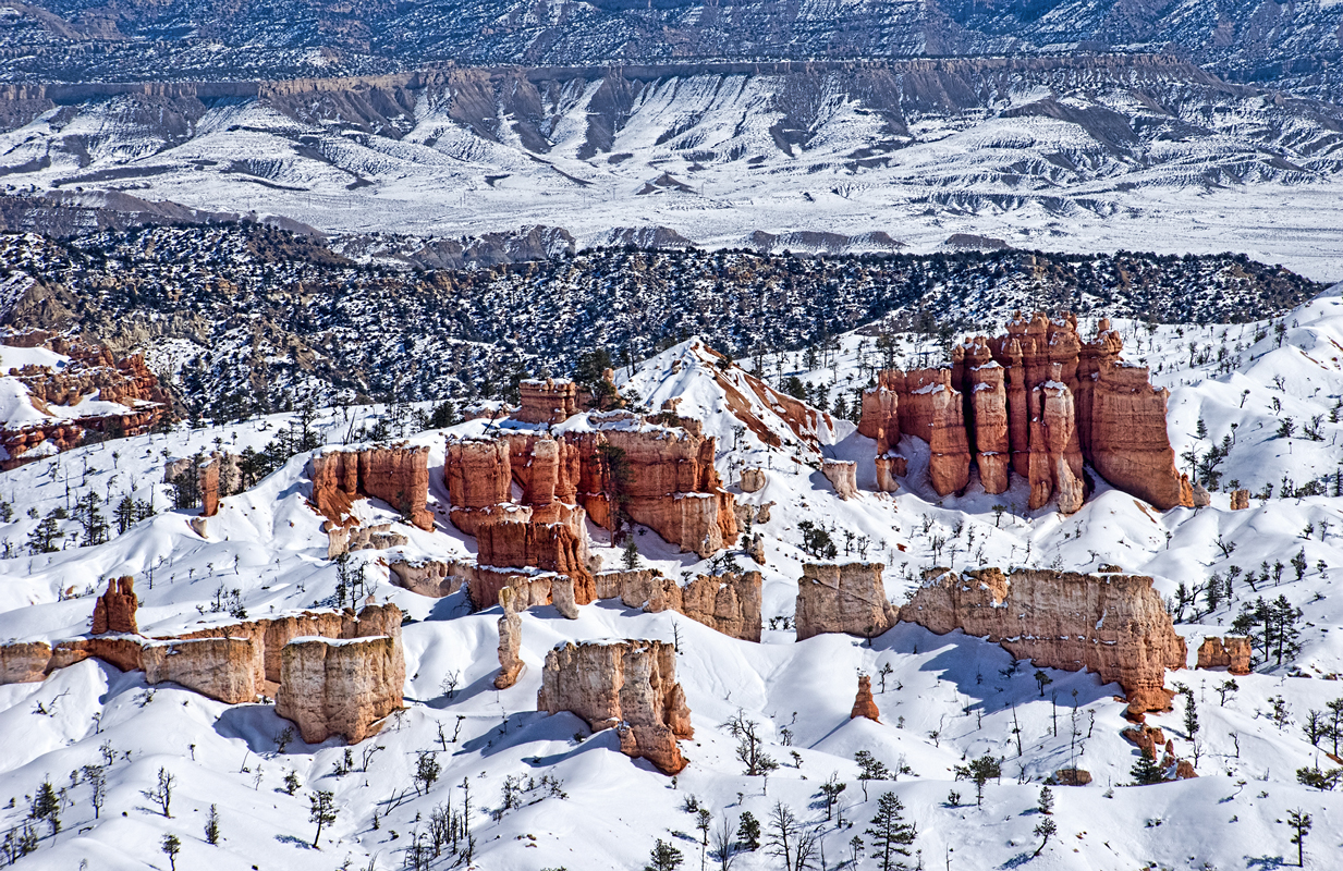 Bryce Canyon Overlook - Digital(Realistic) - Name Withheld Per Request
