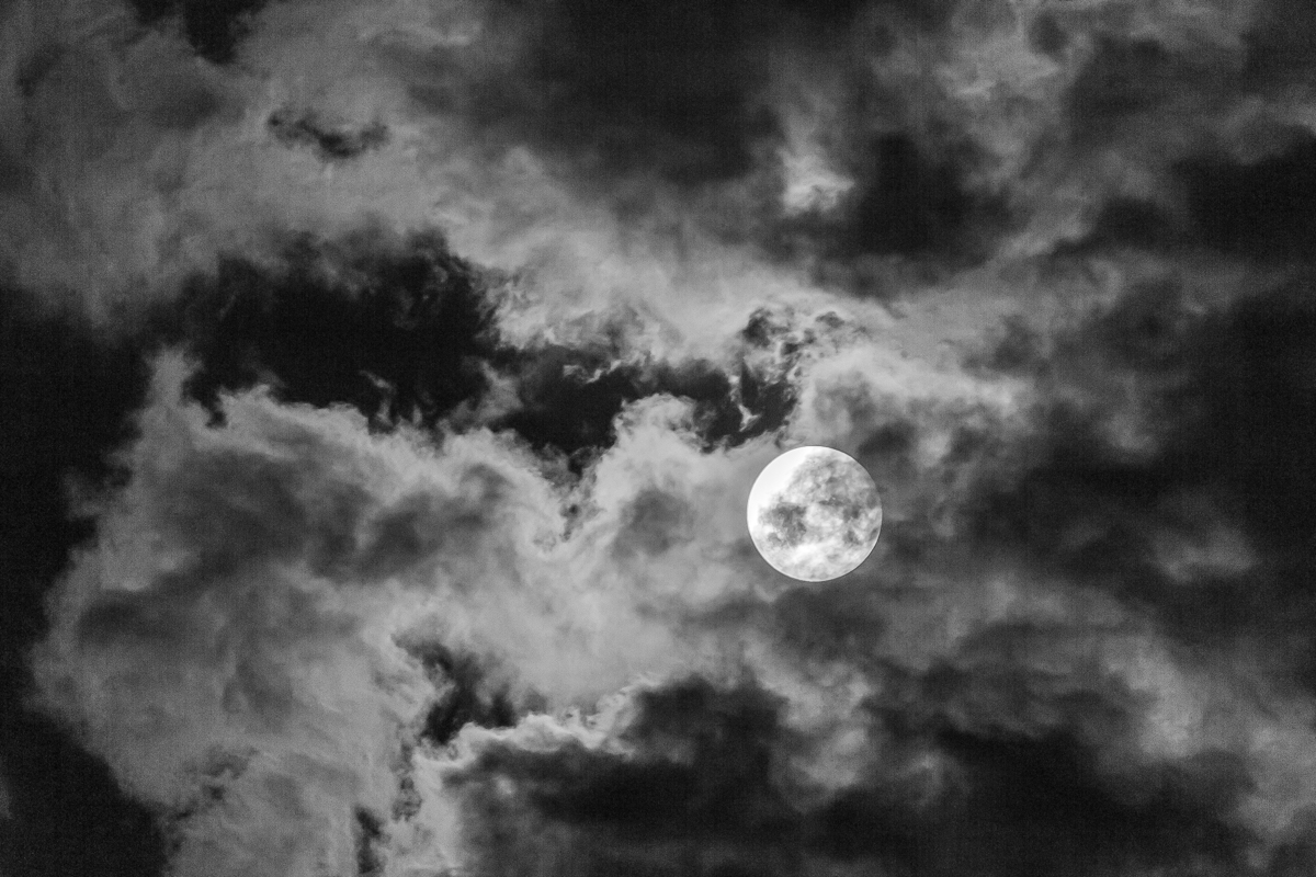 Spooky Moon - Digital(Monochrome) - Name Withheld Per Request