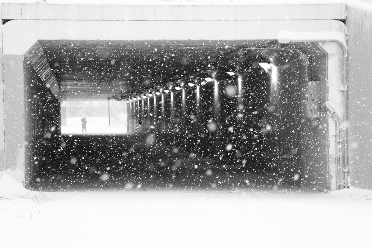 Portal Under 35W - Digital(Monochrome) - Name Withheld Per Request