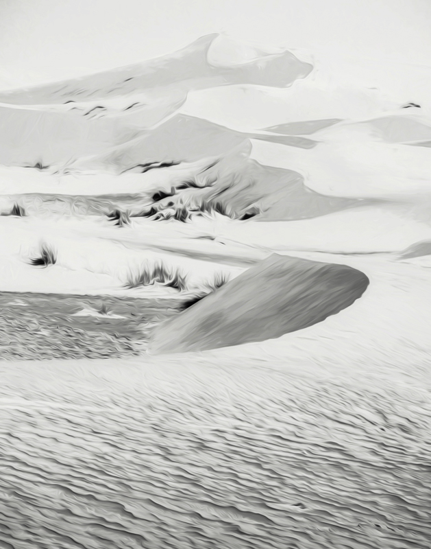Swirly Sand Dunes - Monochrome Print - Cindy Carlsson