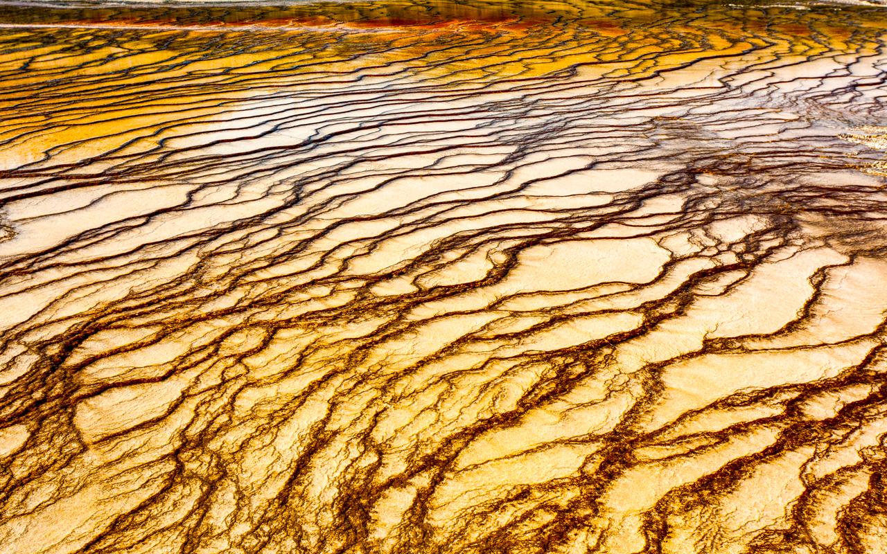 Geyser Basin Yellowstone National Park Park - Digital(Patterns) - Joe Schufman
