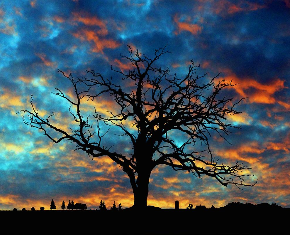 Rural Evening - Digital(Silhouette) - Larry Syverud