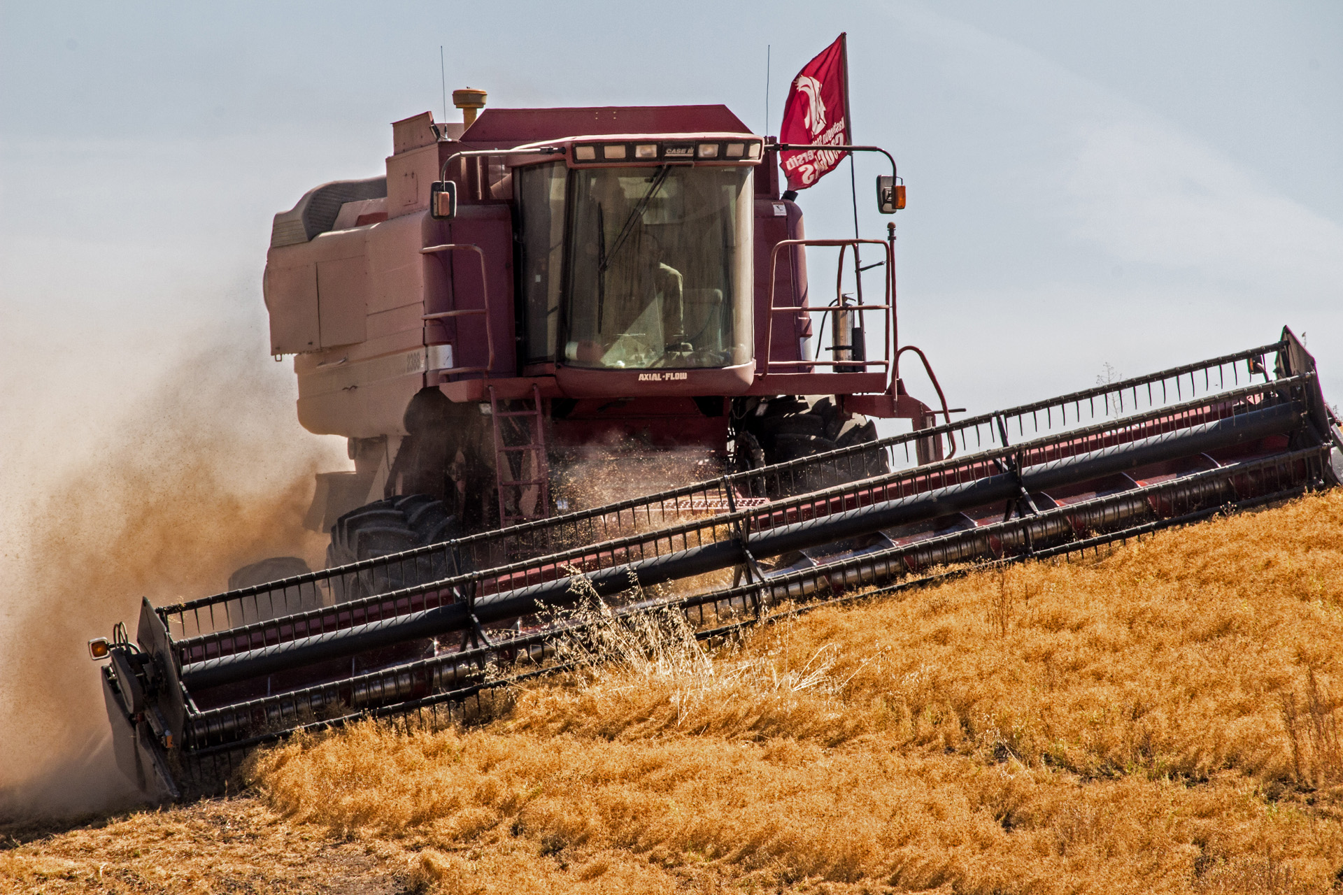 Harvesting in the Palouse - Digital (Action) - Name Withheld Per Request