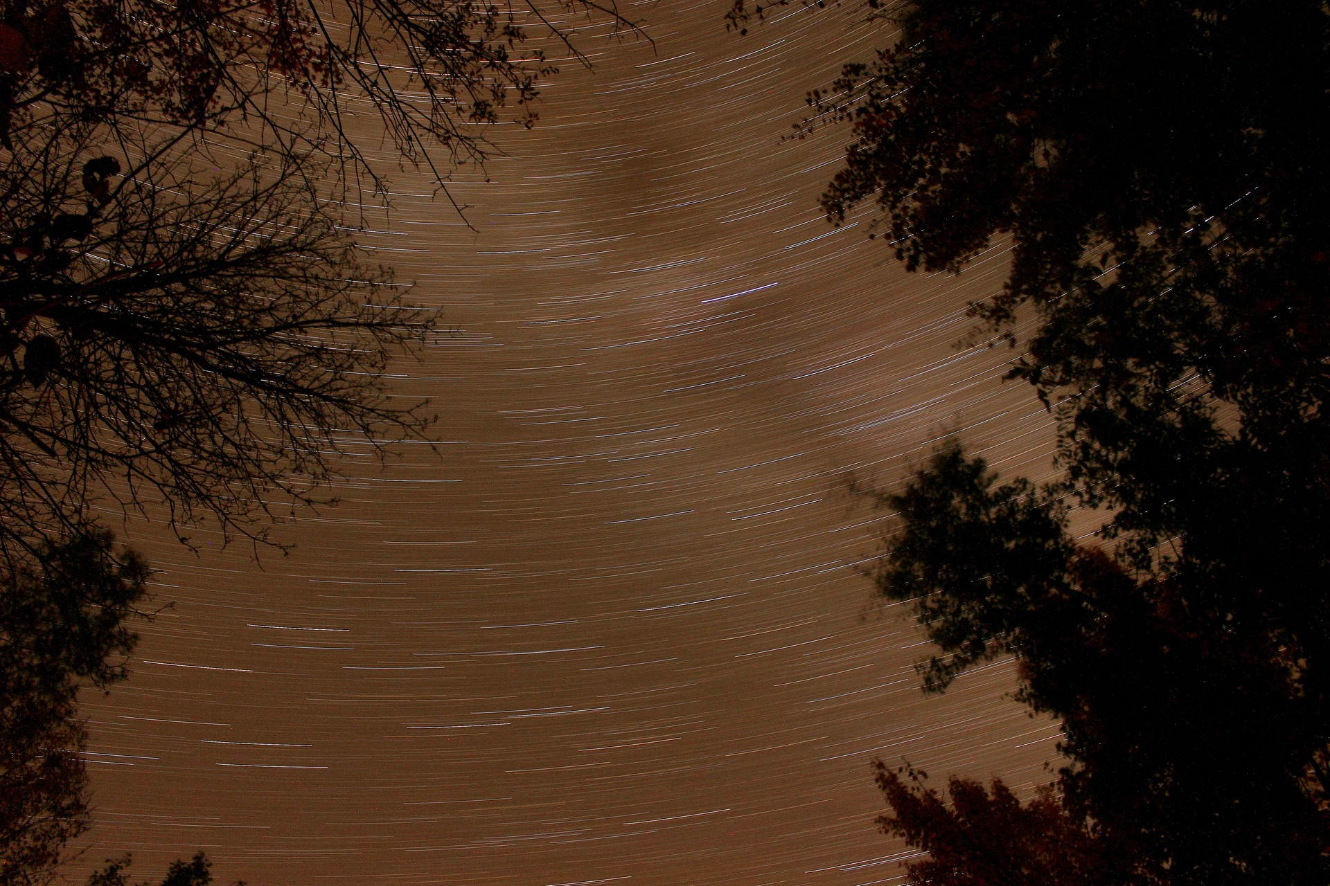 StarTrail - Digital (Action) - Name Withheld Per Request