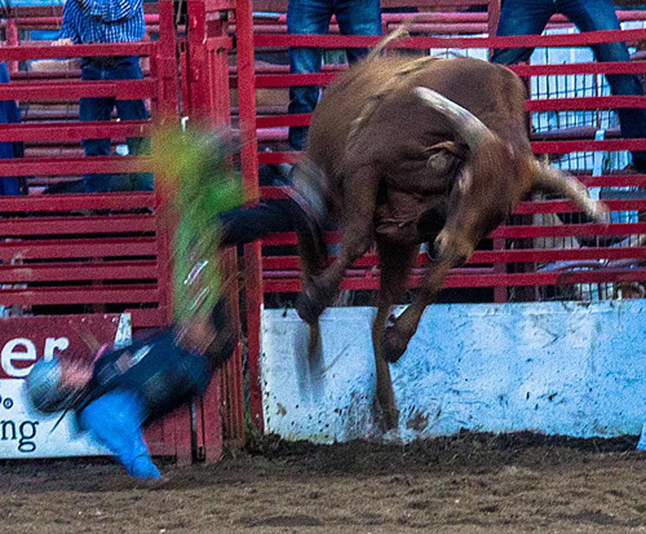 Airborne Bull Rider - Digital (Action) - Name Withheld Per Request