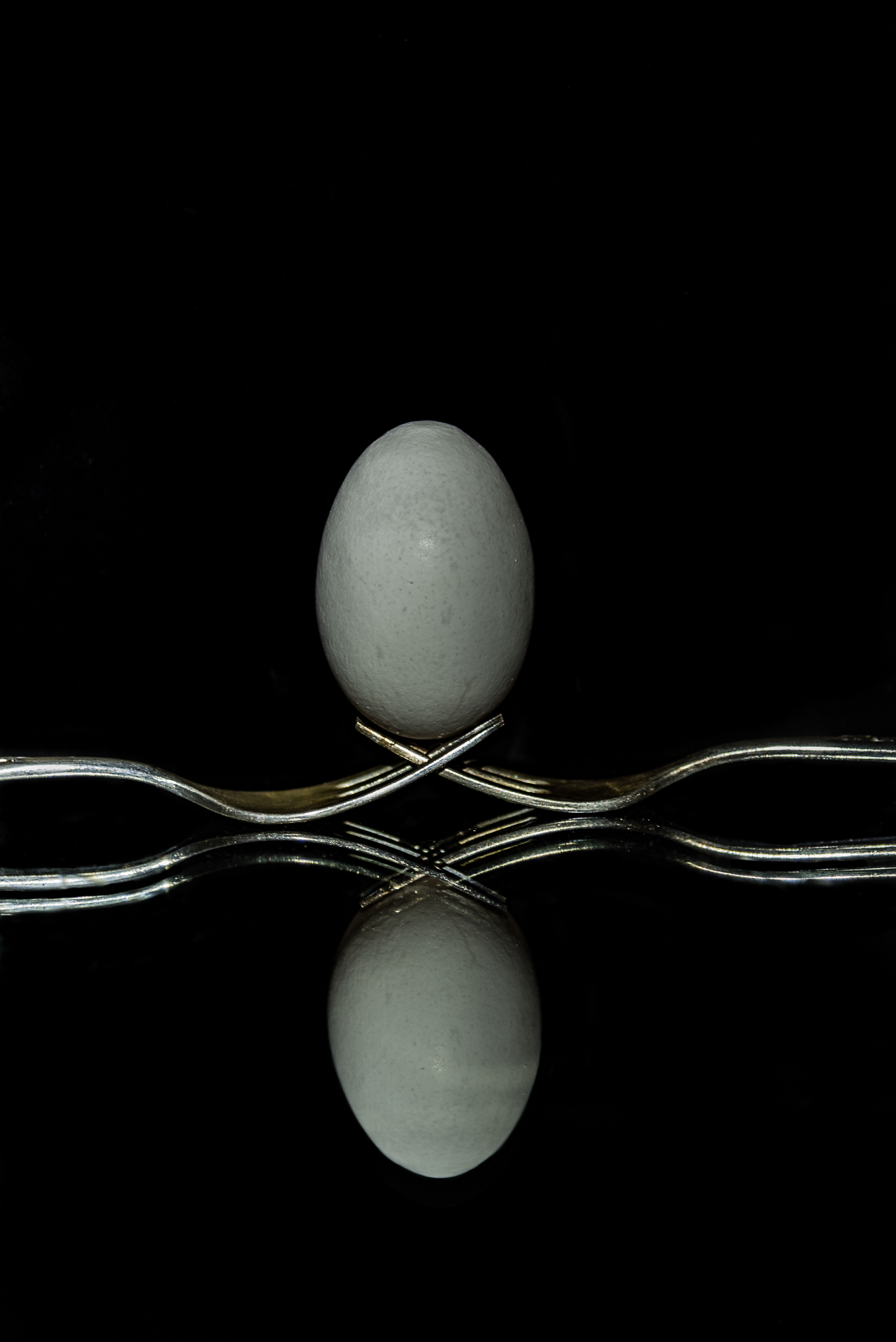 Egg Balanced on Forks - Digital (Artificial Light) - Name Withheld Per Request