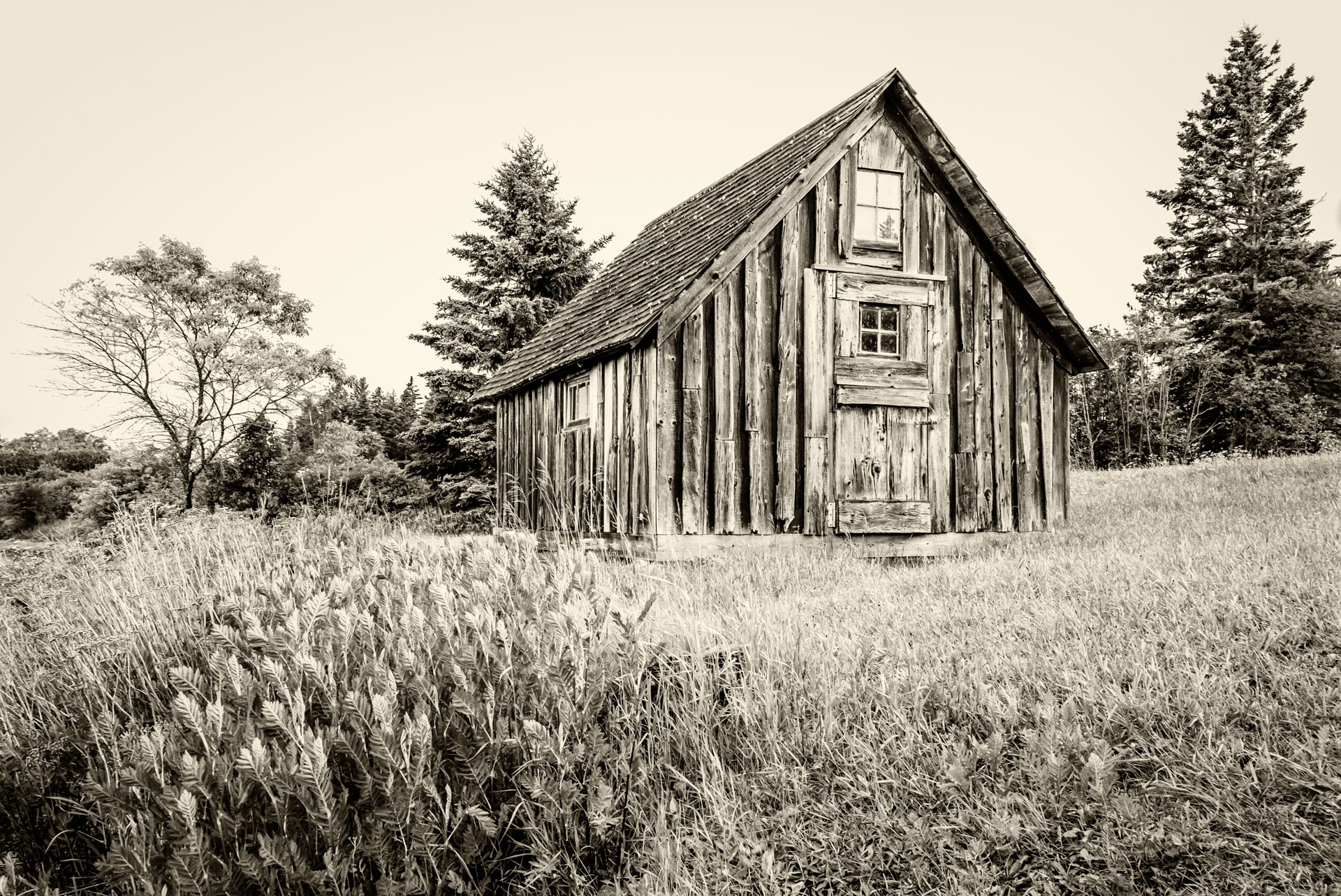 Abandoned Fish Shack - Monochrome Print (Open) - Cindy Carlsson