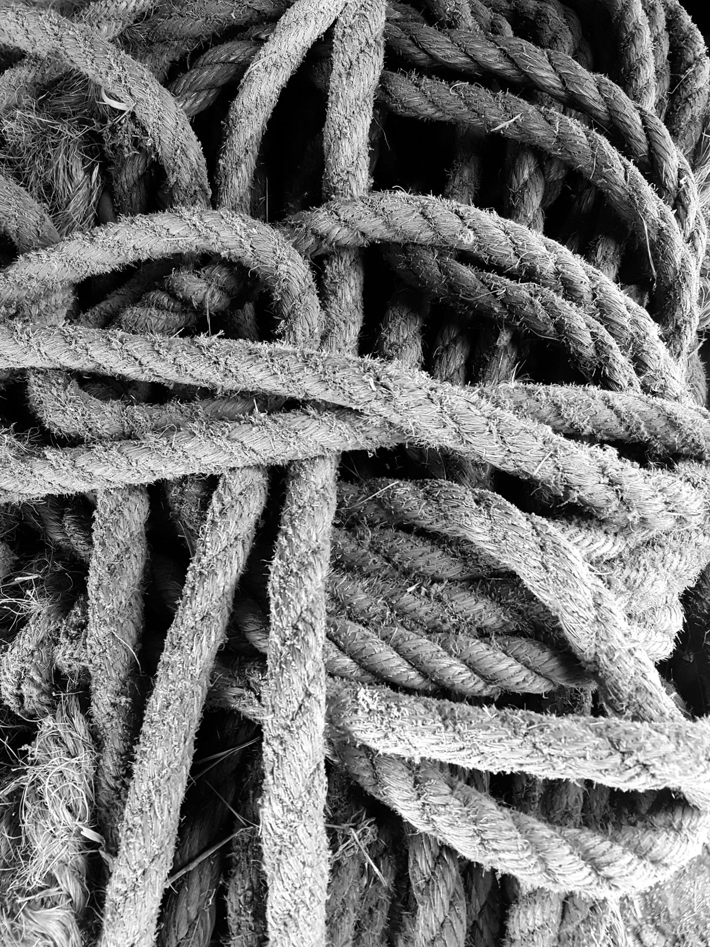 Barn Rope - Monochrome Print (Open) - Name Withheld Per Request
