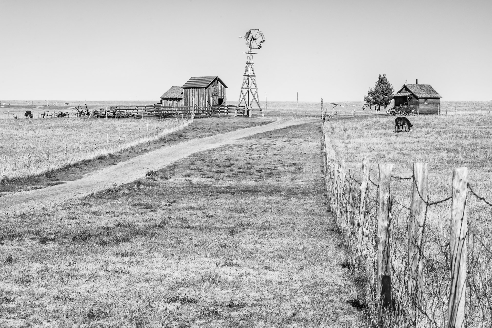 Old farmstead - Monochrome Print (Open) - Cindy Carlsson