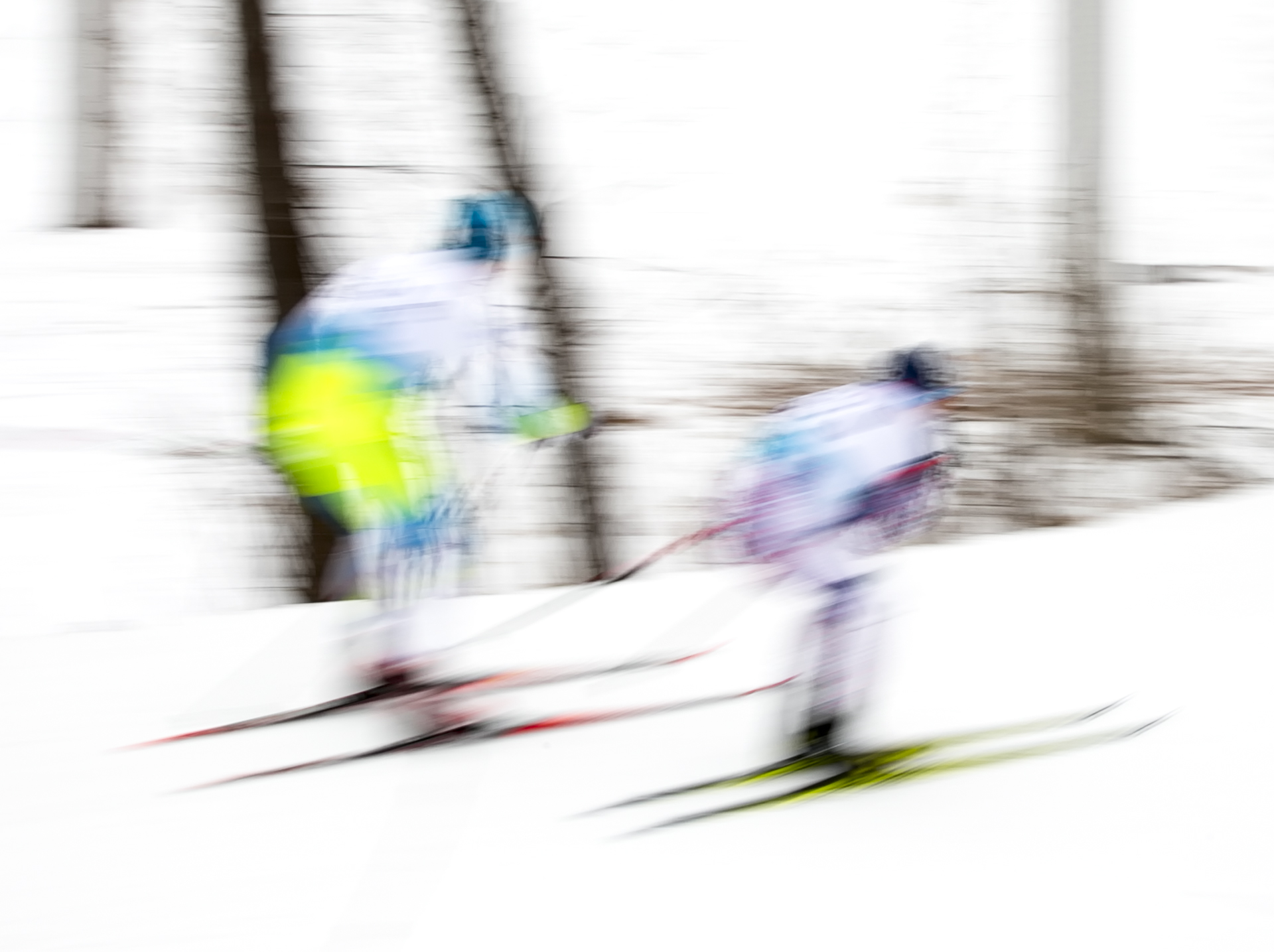 Winter Races - Digital (Winter) - Name Withheld Per Request
